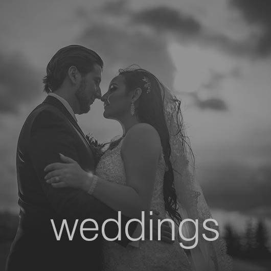All About Edmonton Wedding Photography